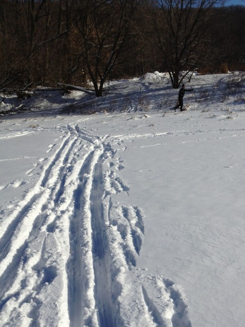 XC Skiing January '14 -2