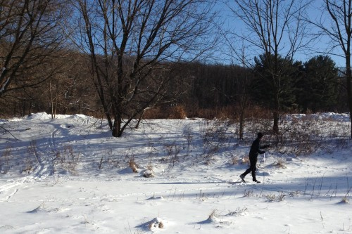 XC Skiing January '14 -3